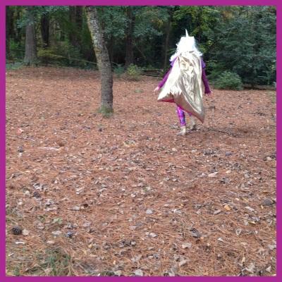 unicorn sighting