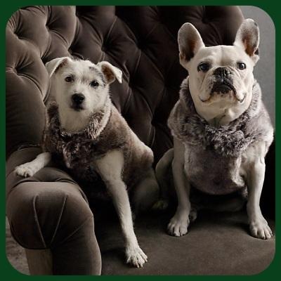 Christmas List fur vest