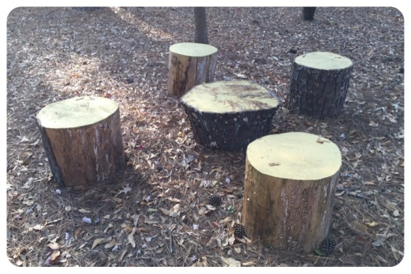 set of stumps